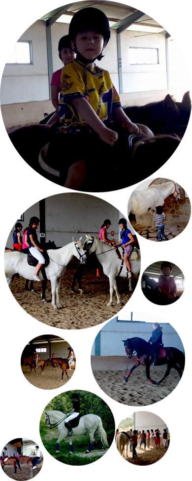 Clases-de-equitacion-collage