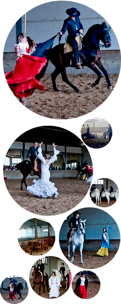 Espectaculo-caballo-collage