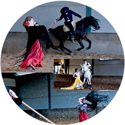 Espectaculo-caballos-circulo